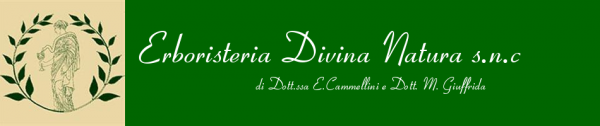 divina natura livorno