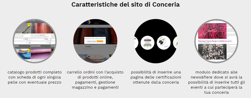 caratteristiche sito web conceria